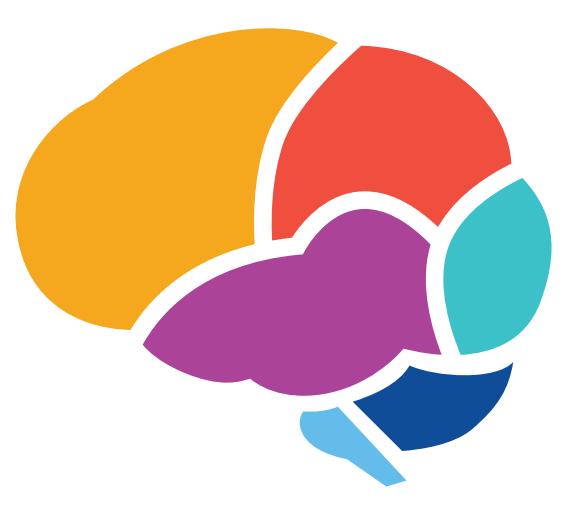 Brain Basic Diagram